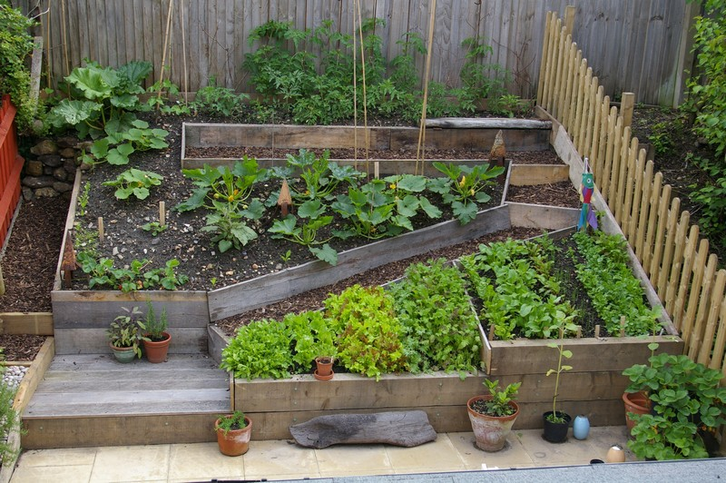 Kate fox sustainable self sufficiency - Small space farming image ...